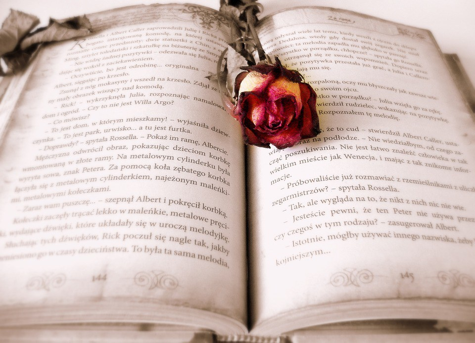 book-419589_960_720-1